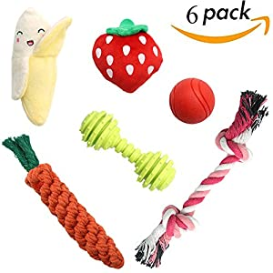 SCENEREAL Small Dog Chew Toys Set Best Stuffed Cute Plush Rope Puppy Toys for Small Dogs Cats 6 Pcs