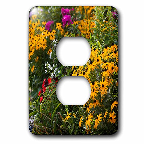 Danita Delimont - Flowers - Massachusetts, Cape Cod, The West End, flowers - Light Switch Covers - 2 plug outlet cover (lsp_230916_6)