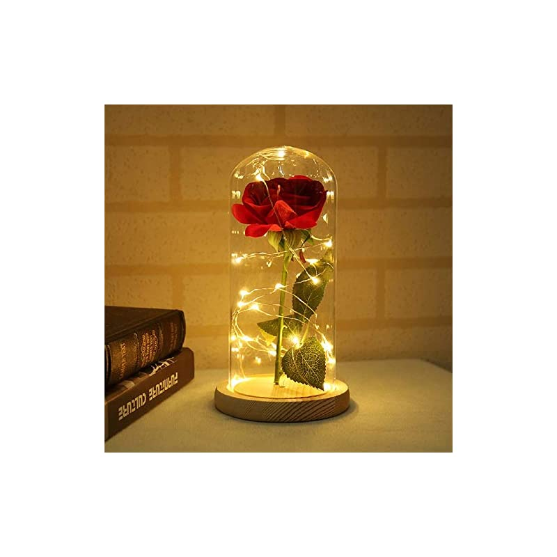 silk flower arrangements toyfun beauty and the beast rose, enchanted rose that lasts forever in glass dome red silk rose with led lights on wooden base, gift for valentine's day wedding anniversary mother's day birthday party
