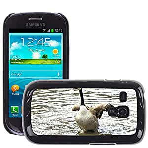 Etui Housse Coque de Protection Cover Rigide pour // M00135646 Gansos de Canadá Primavera Tiempo de // Samsung Galaxy S3 MINI i8190