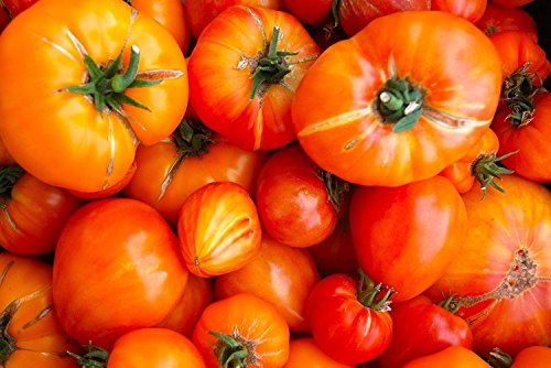 Old German Tomato Seeds, NON-GMO, Heirloom, Variety Sizes, (100 Seeds) ()