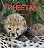 Cheetah - Eye on the Wild, , 1847803016