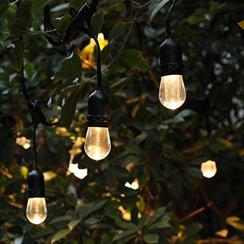 DEWENWILS LED Outdoor String Lights, 24 FT, 12 Acrylic Bulbs