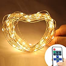 Eastchina | Warm White Color 10m/33ft 100 Leds Copper Wire Flexible Lights | Led String Lights | with Wireless Remote Control Mini Dimmer | with 12v Adapter | for Wedding Christmas Party Holiday Celebration
