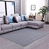 Home Living Room Washable Carpet Comfortable Bedroom Bedside Anti-skid Carpet Simple Living Room Coffee Table Sofa Large Carpet Creative Fashion Baby Crawling Mat ( Color : Gray , Size : 160×200cm )