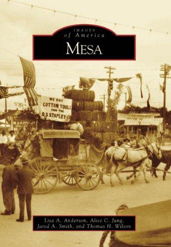 Mesa (Images of America: Arizona) PDF