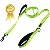 Soft &Thick Double Handle 6FT Leash with Reflective Stitching Premium Strength Dual Padded Handles for Medium, Large or XLarge Dog - 5 Vibrant Colors 'Classic Comfort' (Reflective Neon Green)