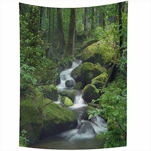 (Ahawoso Tapestry Wall Hanging 50x60 Greenery Green Waterfall Cascade Falls Over Mossy Rocks Nature Creek Forest Parks Water Stream River Home Decor Tapestries Decorative Bedroom Living Room Dorm)