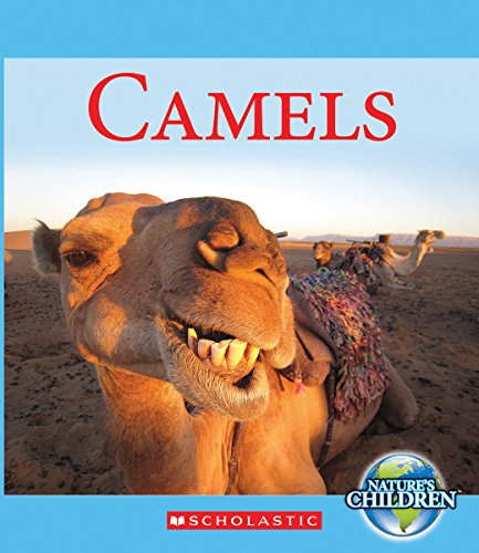 Camels (Nature's Children)