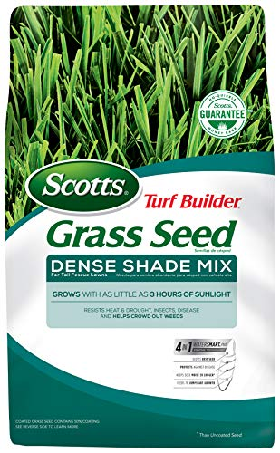 Scotts Turf Builder Grass Seed - Dense Shade Mix for Tall Fescue Lawns, 3-Pound (Best Grass Seed For Hard To Grow Areas)