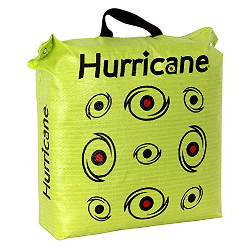 Hurricane H-20 Deer Archery Target w/HME Bowhunting 30 Inch Bag Target Stand