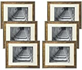 Studio 500 11 by 14-inch, Antique Series Document Frames, Comes with an 8x10 Mat! (Comes in, 6-Pack (Gold)