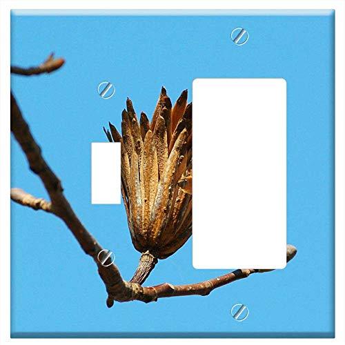 1-Toggle 1-Rocker/GFCI Combination Wall Plate Cover - Poplar Seed Tulip Poplar Last Stage Seed Pod