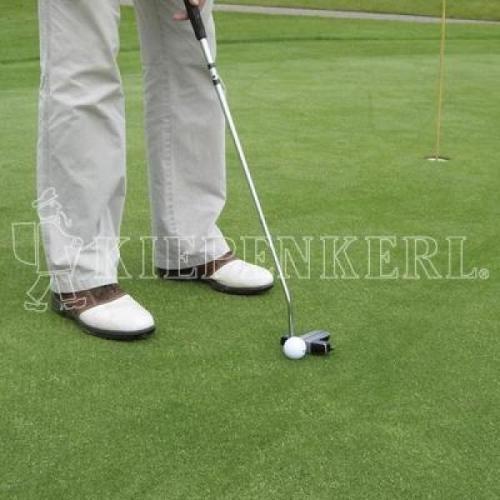 Kiepenkerl RSM 4.4.3 Golfrasen Spielbahn 10 kg, Rasensamen, Rasensaat