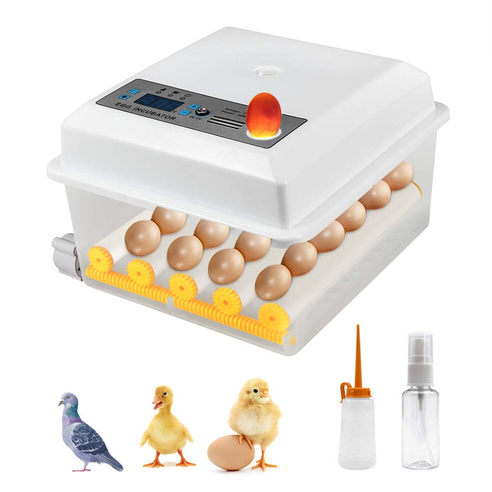 4YANG Incubadora de huevos Mini incubadora automática digital de 16 huevos con volteador para incubar huevos de gallina de codorniz de pavo máquina de incubación de huevos