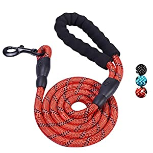 Sonas Brands 5 FT Strong Dog Leash with Comfortable Padded Handle and Highly Reflective Threads for Medium and Large Dogs 1