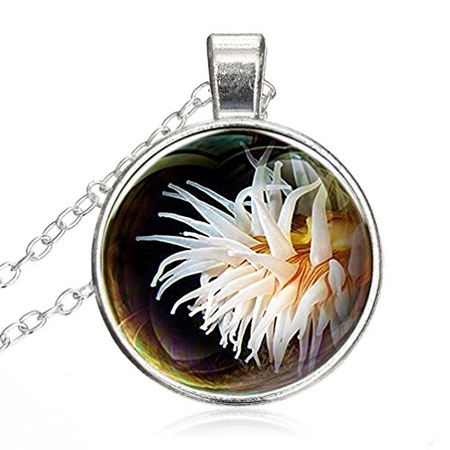 - Mysterious Time Gem Pendant Chain Necklace White Sea Urchin Pendant Necklace Chain Glass by T&H Home
