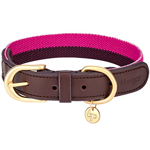 Picture of Blueberry Pet 8 Colors Polyester Fabric and Soft Genuine Leather Webbing 3/4