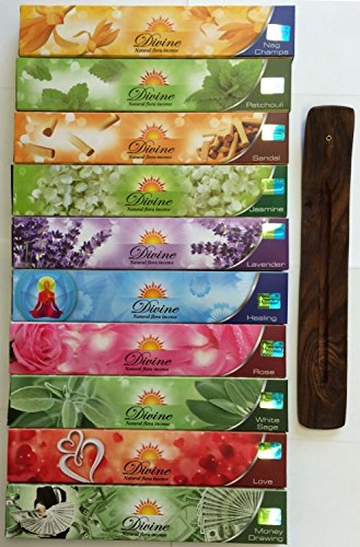 Gift Set of 10 Nag Champa Sandalwood Patchouli Rose Lavender Jasmine Healing Love White Sage Money Drawing Incense Kit(incense Holder Included) (Money Incense Pack)