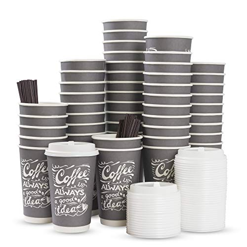To Go Disposable Hot Coffee Cups with Lids & Stirrers| 16oz 50pcs Pack Double Wall, Recyclable, Insulated | No Sleeves Need | Takeaway Paper Cups for Hot Drinks