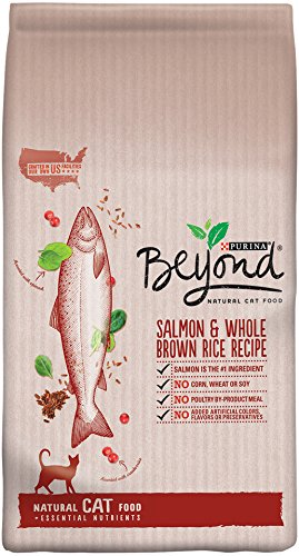 Purina Beyond Natural Dry Cat Food, Salmon and Whole Brown R