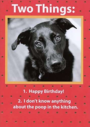 Amazon Com Two Things Recycled Paper Greetings Funny Birthday Card From The Dog Office Products