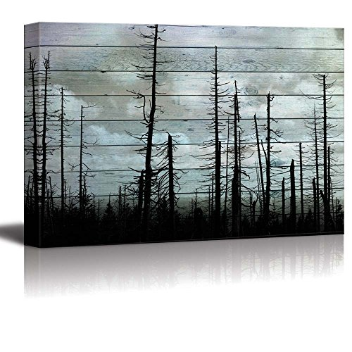 Silhouette of Trees on a Cloudy Day with a Wood Panel Overlay