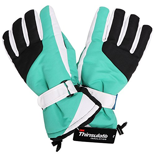Livingston Women's Thinsulate Lining Water Resistant Winter Sports Ski Gloves