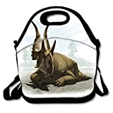 Diabloceratops Print Insulated Lunch Tote Bag Lunchbox for School Work