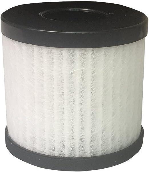 Leadyoung True HEPA Reemplazo de Filtro para el purificador de ...