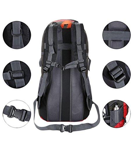 50L Professionelle Berg Tasche Schultertasche mit großer Kapazität Outdoor-Camping Purple