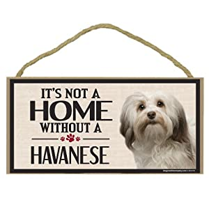 Imagine This Wood Sign for Havanese Dog Breeds 15