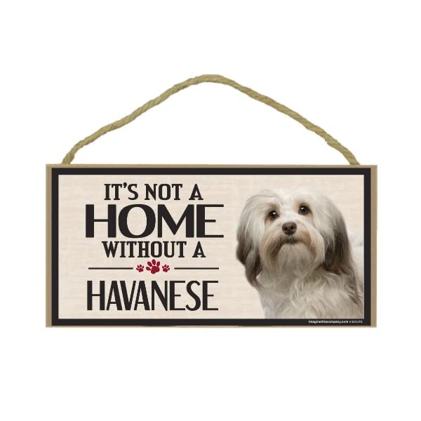 Imagine This Wood Sign for Havanese Dog Breeds 1