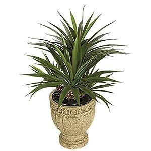 31 Inch Star Succulent Aloe Signature Foliage 6