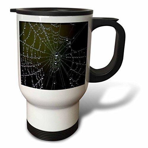 3dRose tm_205253_1 USA, Georgia, Savannah, Dew Drops on Spider a Web Stainless Steel Travel Mug, 14 oz, White