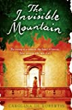 Front cover for the book The Invisible Mountain by Carolina De Robertis
