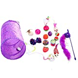 Cat Toys, 17 Pieces Including 1 Cat Funny Toy Teaser, Lot of Different Cat Toys, Cat Tunnel Cat Grass Interactive Fish Feather Teaser Wand Toy Fluffy Mouse, Crinkle Bells for Cat, Puppy, Kitty (17 pieces)