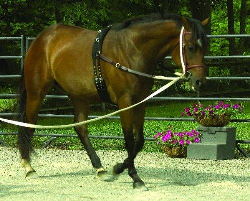 Perri 'sネオプレントレーニングSurcingle Horse ブラック B004BQ5Y9G