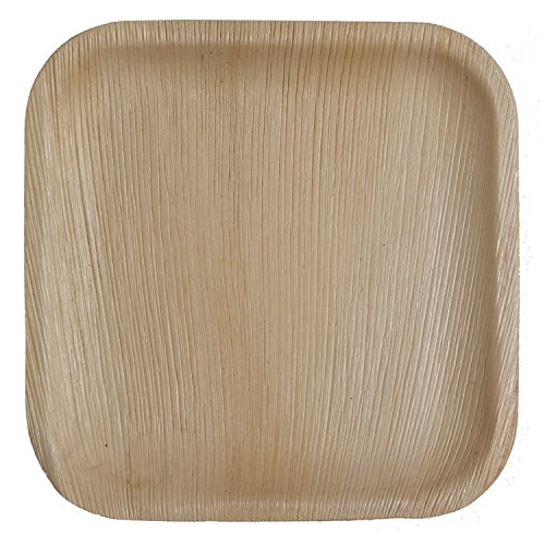 Table To Go Palm Leaf Square Dinner Plates, 10-Inch, Pack of ()