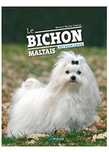 Bichon Maltais Broché – 5 août 2009 Collectif Artemis 2844168620 9782844168627_DMEDIA_US