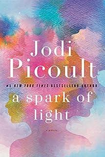 Book Cover: A Spark of Light: A Novel