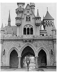 Walt Disney 8 inch x 10 inch Photo in front of Castle black & white