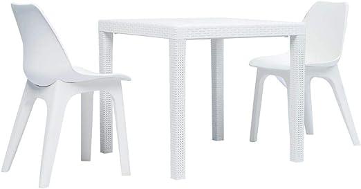 honglianghongshang Muebles de jardín Conjuntos de jardínJuego de Mesa y sillas de jardín 3 Piezas plástico Blanco: Amazon.es: Hogar