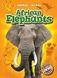African Elephants, Kari Schuetz, 1600146007