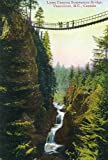 Vancouver, Canada - View of Lynn Canyon Suspension Bridge (12x18 Collectible Art Print, Wall Decor Travel Poster)