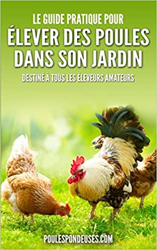 Le Guide Pratique Pour Elever Des Poules Dans Son Jardin
