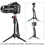 Neewer 14 inches/36 Centimeters Mini Travel Tabletop Camera Tripod with 360 Degree Ball Head for iPhone,Samsung,Huawei Smartphone,Gopro,DSLR Camera,Load up to 6 pounds(Phone Clip NOT Included)