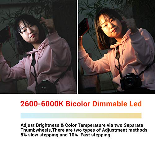 Iwata Pro 144 LED Bi-Color Dimmable On-Camera Led Video Light, OLED Screen, CRI97 TLCI99 Accurate Color, 2600-6000K Adjustable, 7500lux@0.3M High Brightness, Aluminum Body with PERGEAR Tripod by iwata-Tech (Image #5)