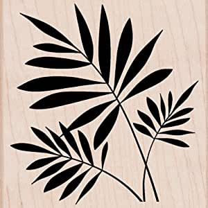 Hero Arts Mounted Rubber Stamps, 4 by 4-Inch, 3 Ferns