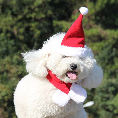 COM4SPORT Pet Christmas Hat Suitable For Small Pet Cats and Dogs Red and White Pet Christmas Hat and Scarf Pet Christmas Fancy Dress